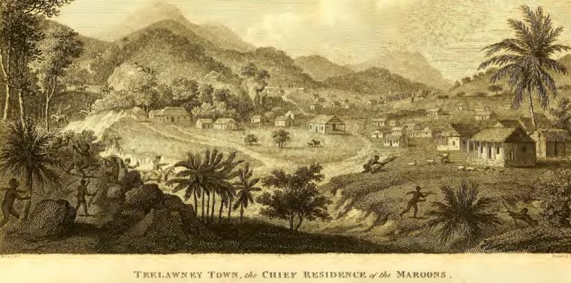 Trelawney-town